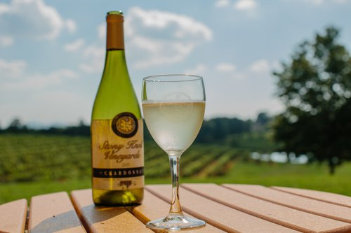 Stony Knoll Vineyards in Dobson, Yadkin Valley NC