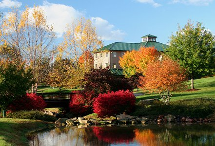 Pair Yadkin Valley Wines with Fall Color this Autumn